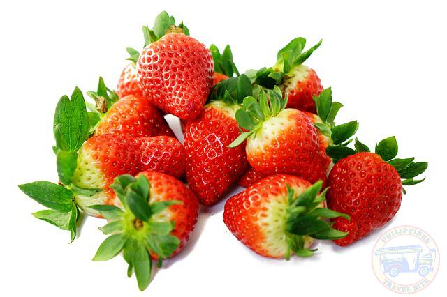 Strawberries - Philippines Travel Site