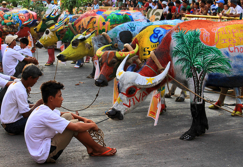 Carabaw Festival