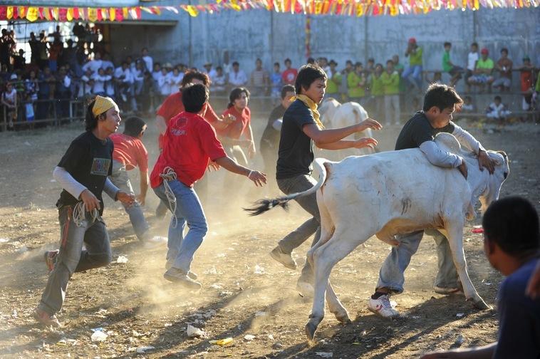 Kabakahan Festival