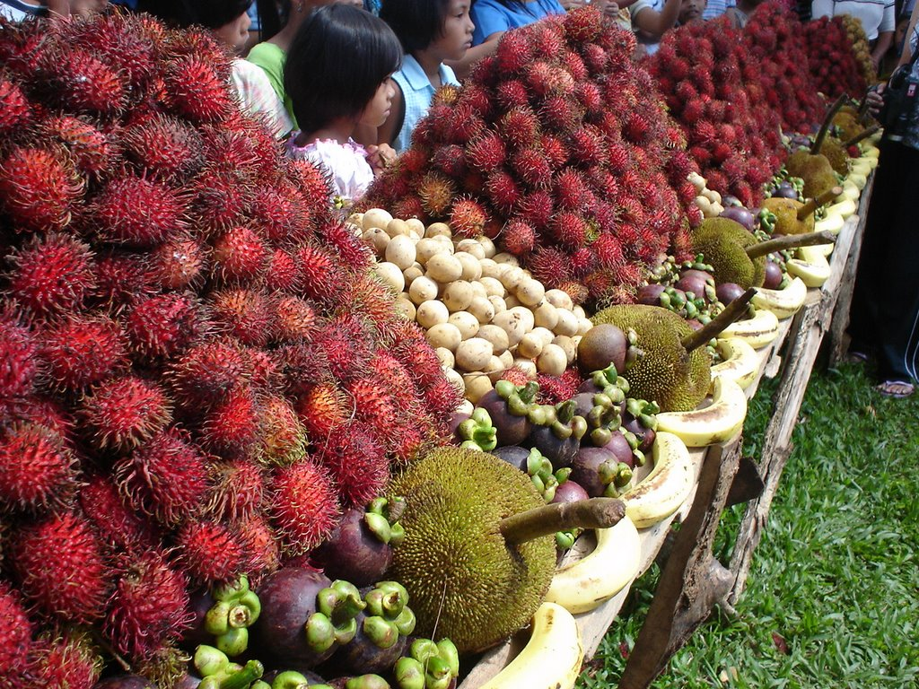 Kidapawan City Fruit Festival