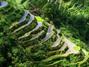 BANAUE RICE TERRACES - Philippines Travel Site